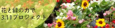 花と緑の力で3.11プロジェクト