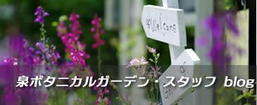 泉ボタニカルガーデン スタッフブログ